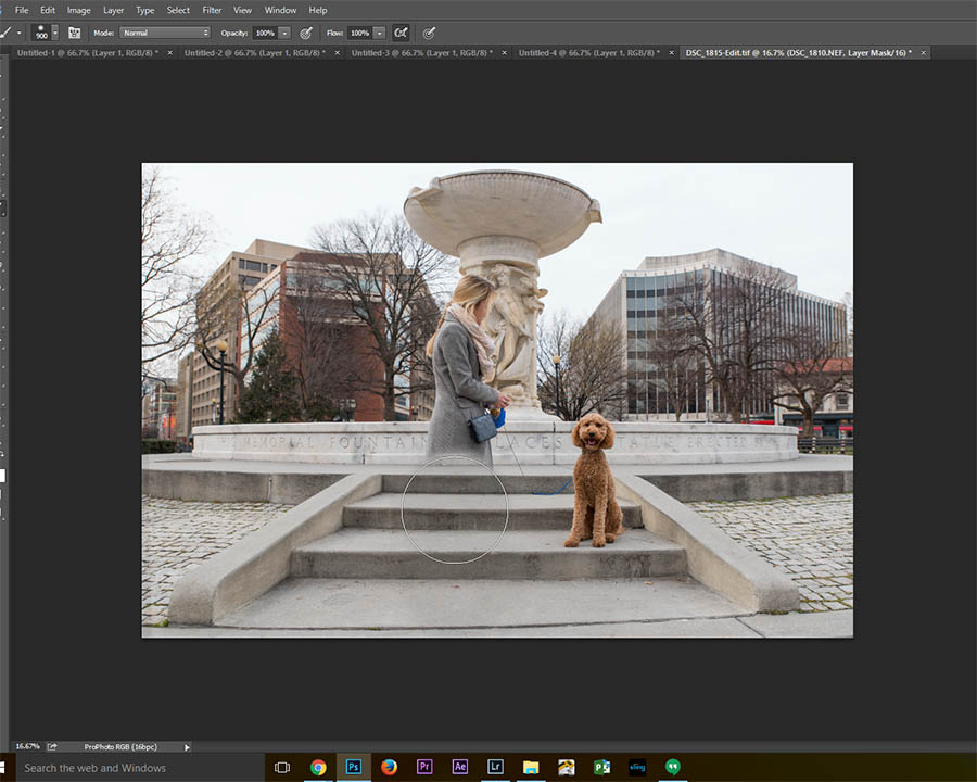 layer masks pet photography